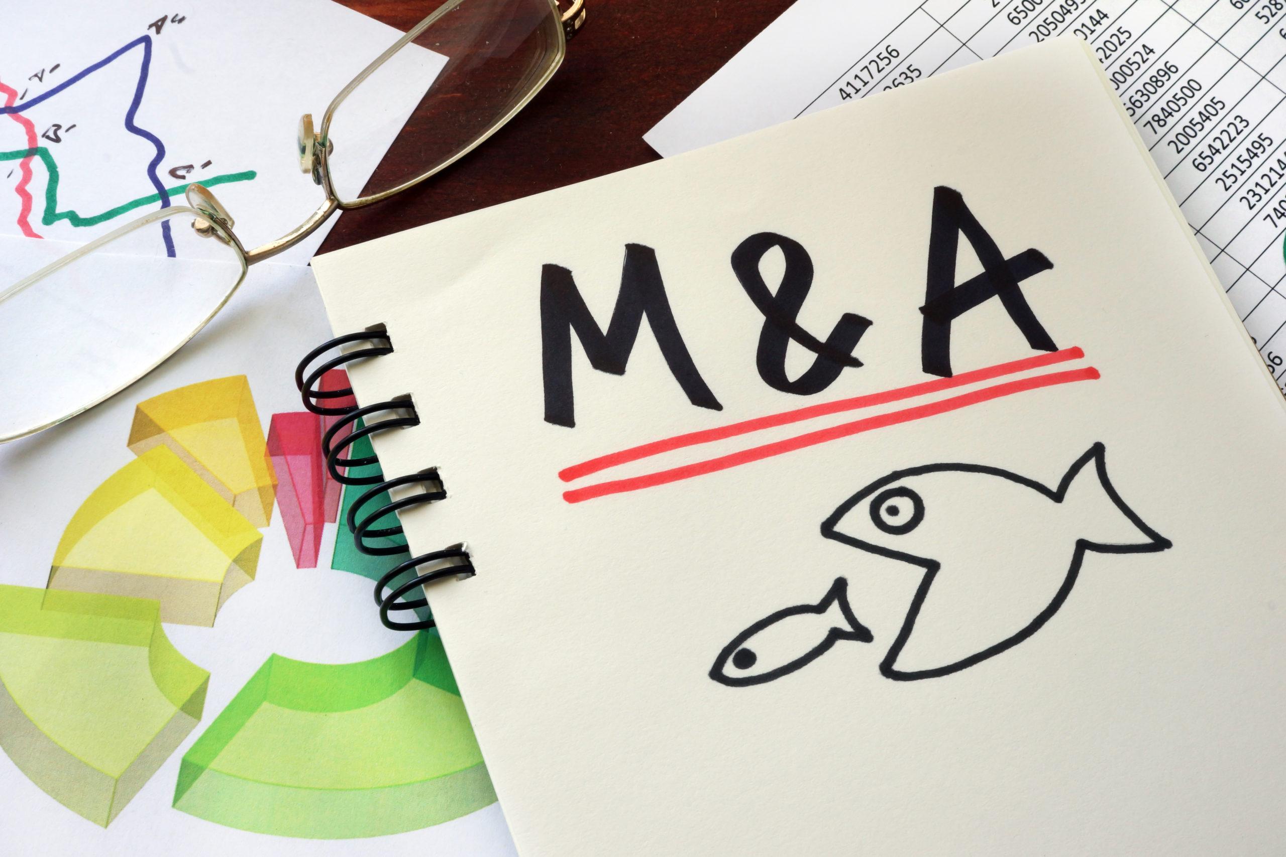 Problemas jurídicos abalam fusões e aquisições